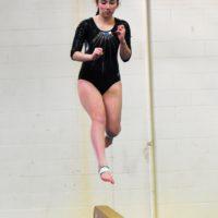 2019 Cincinnati City Gymnastics Championships